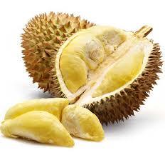 fakta buah durian